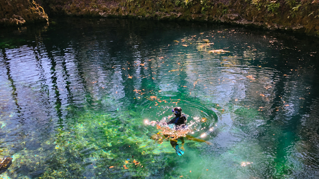 Petuch prepping for video shoot at Madison Blue Springs